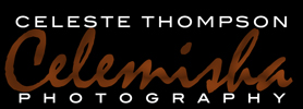 Celemisha Photography - Real Estate Photography